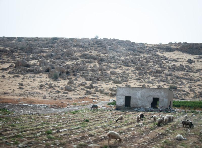 Israel_0563.jpg