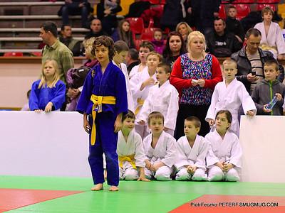 Judo 2013