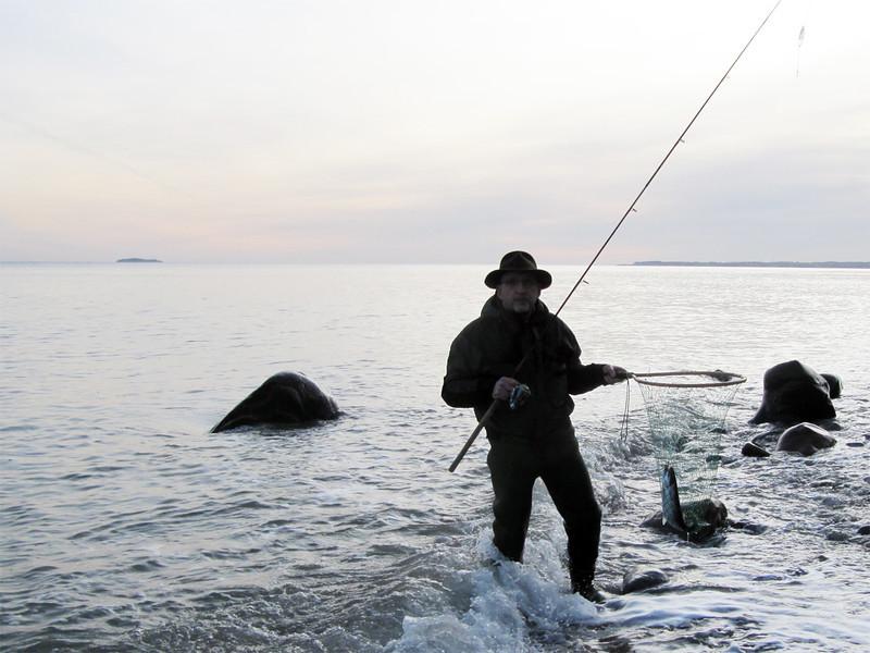 """Hatten"" får fisk, januar 2012"
