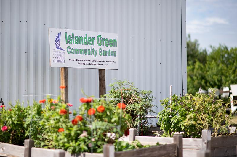 Islander Green Garden.