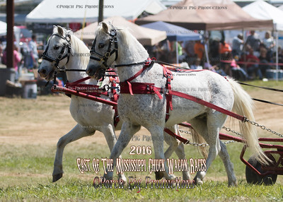 "Saturday 46"" Ponies East of The Mississippi Chuckwagon Races"