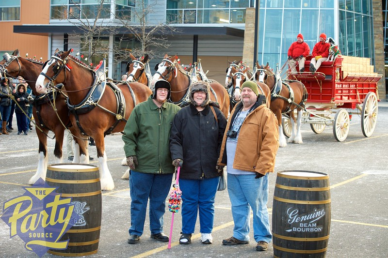 Clydesdale Portraits 144.jpg