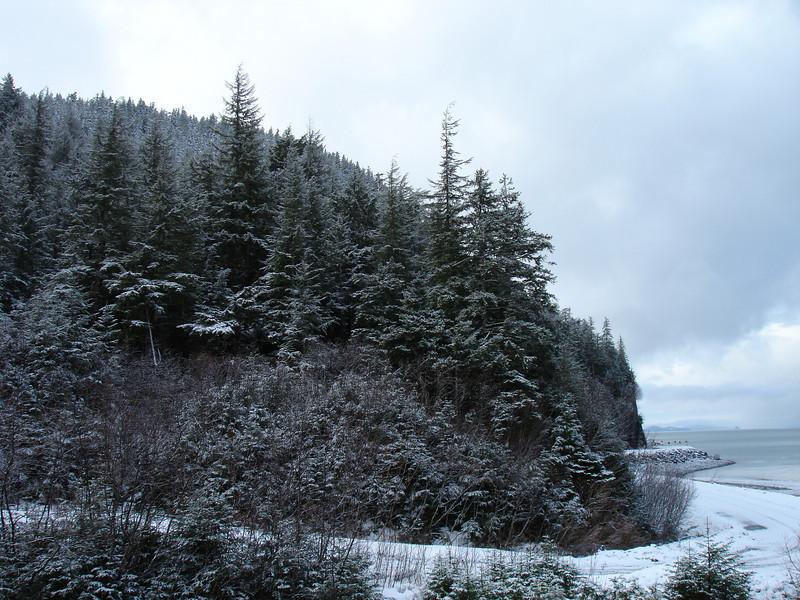 Alaska 2008 080.jpg
