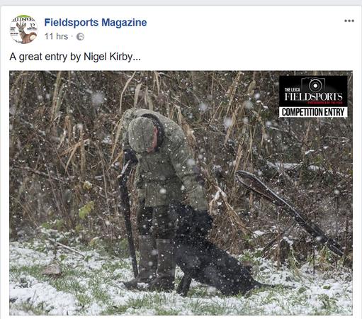 Fieldsports Magazine.png