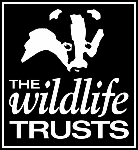 The Wildlife Trusts  logo(1).jpg