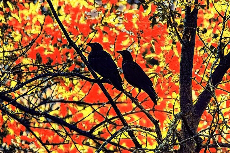 Bird Painnt_Creation_2020-09-22_073034.jpg