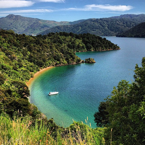 One after another stunning little bays, Queen Charlotte Drive, top of the South Island #newzealand