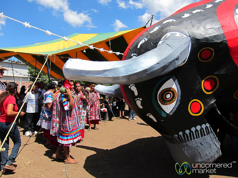 Paper Mache Bull Charges during Carnaval - San Martin Tilcajete, Mexico