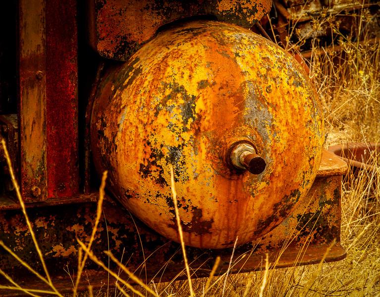 Tank, Almaden Quicksilver County Park, California, 2007