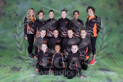 Team 2017 - Girls Xcel Platinum and Diamond