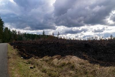 Eatonville Wildfire