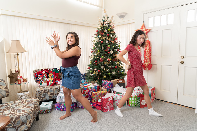 Hawaii - Christmas 2018-72.jpg