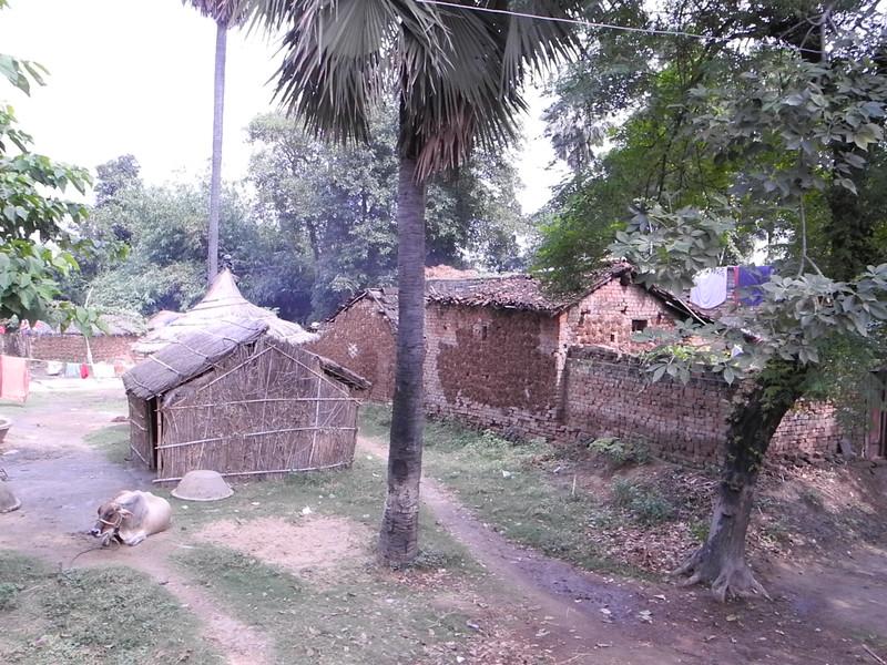 india&nepal2011 261.jpg