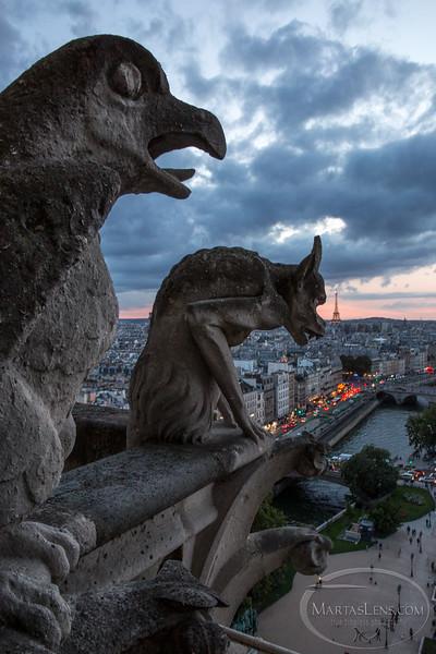 Notre Dame, Paris-41.jpg