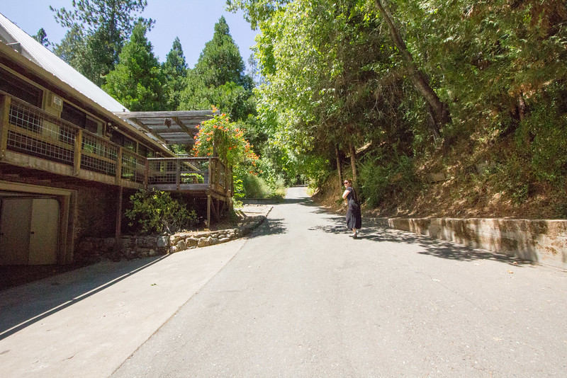 El Dorado Ranch-8056.jpg