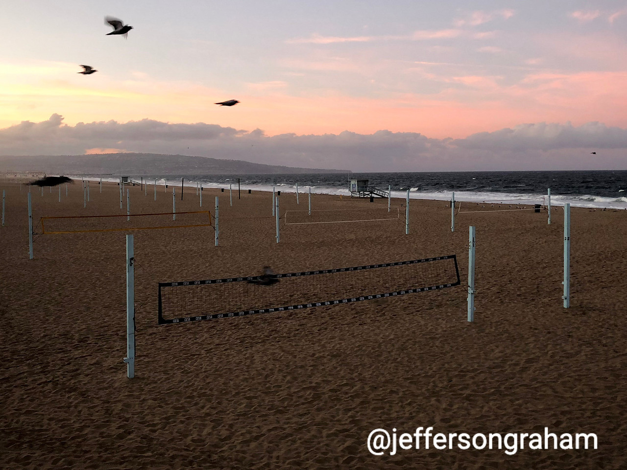 Birds enjoy themselves over an empty volleyball net on a Manhattan Beach morning