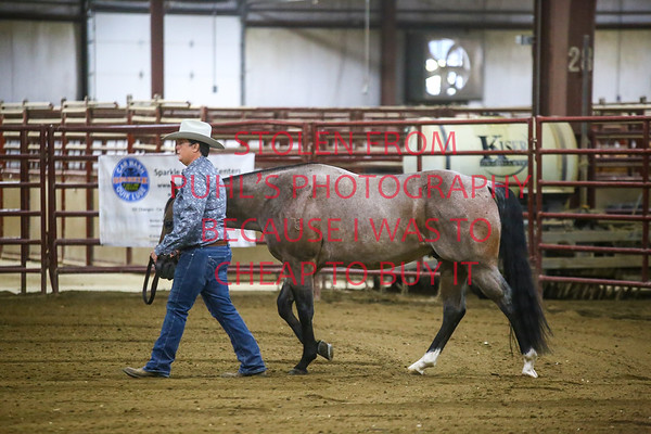 Midwest Ranch Horse Classic 2019