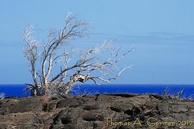 Hawai'i 2012