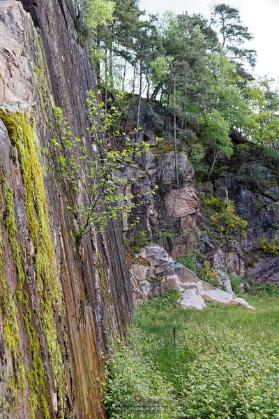 En allant au Puy de Pauliac , carrière de grès