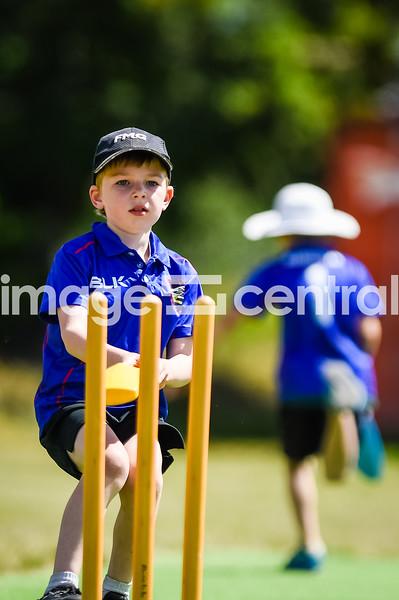 Otago Country Cricket