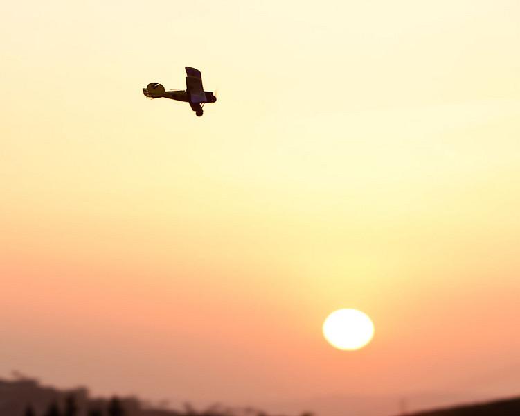 AlbatrosSunset9.jpg