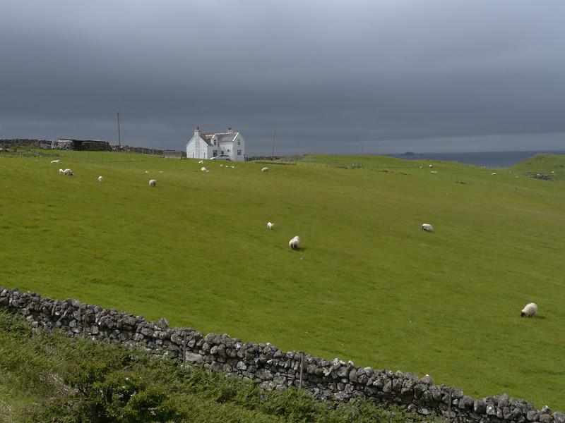 @RobAng Juni 2015 / Kilmaluag, Isle of Skye / Eilean a'Cheo Ward  (Inner Hebridies), Scotland, GBR, Grossbritanien / Great Britain, 35 m ü/M, 2015/06/20 13:53:01