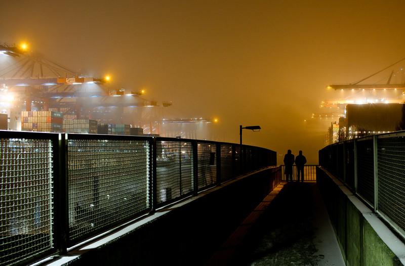 Waltershofer Hafen bei Nebel bei Nacht im Winter Hamburg