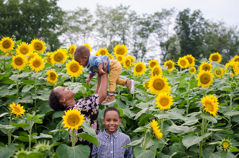 SuzysSnapshots_Sunflowers_Brittany-5966.jpg