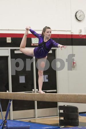 Awest Gymnastics 2015