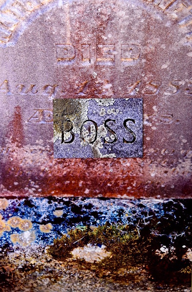 Kat O'Neill:Boss 1883:Set in Stone Series.jpg