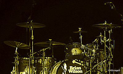 Brian Wilson