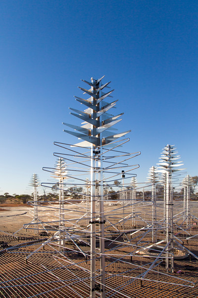 SKALA antennas of the Aperture Array Verification System (AAVS) 1.5