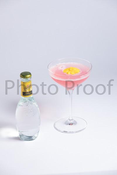BIRDSONG Schweppes Cocktails 090.jpg