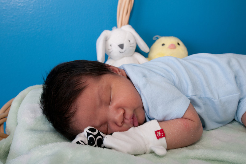 2013-03-30 - Meet Lincoln - Day 19 (First Easter) - 031 - _DS34245.jpg
