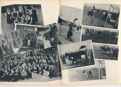Seizoen1950-1951