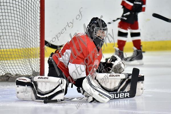 Schuylkill Valley/Hamburg vs Wilson Varsity Ice Hockey 2015 - 2016
