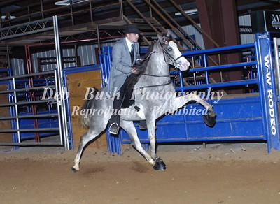 CLASS 13 - 2 YR OLD OPEN