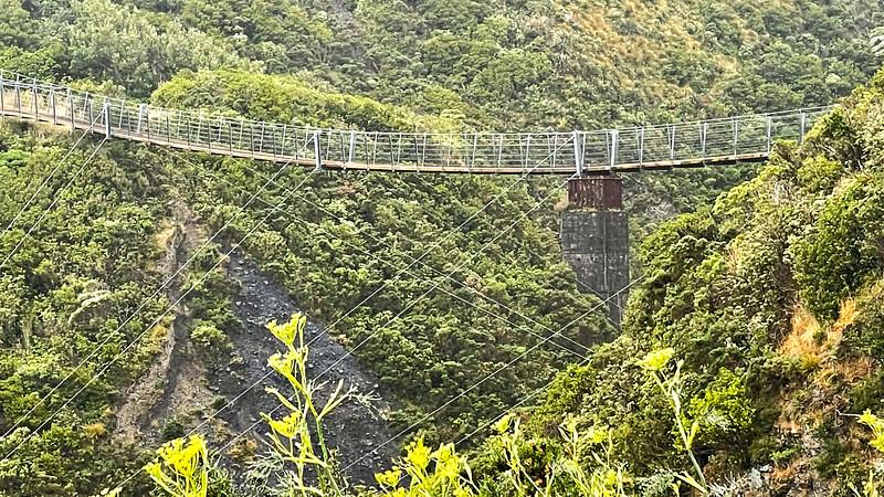20210206 Fred Hutchings on Remutaka Rail Trail on Aotearoa Cycle Challenge -02.jpg