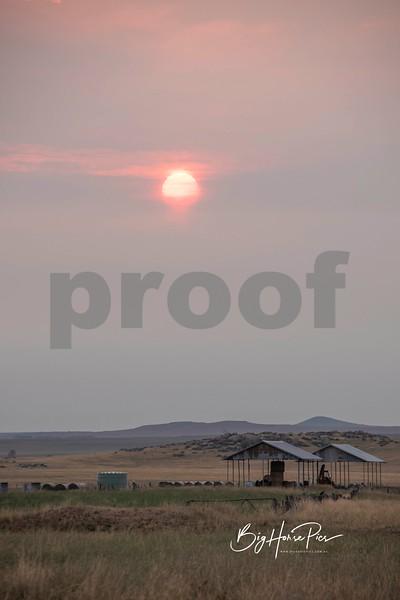 airport sunrise e march 3 2019-1.jpg