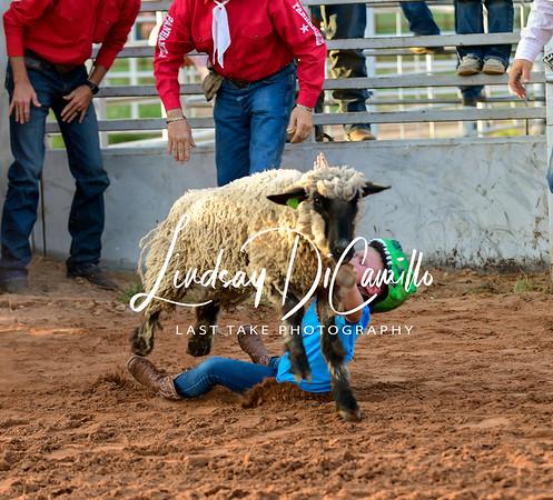 Nocona Tx  Bullfest May 8th 2021