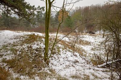 Snow Prokopak