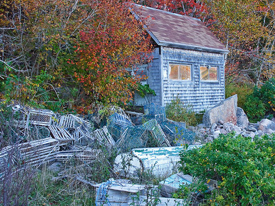 Acadia National Park 2008