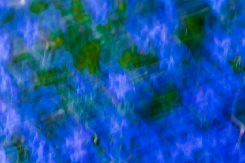 Peter-West-Carey-Abstract2016-0420-4743.jpg