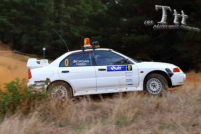 Forest Rally 2013