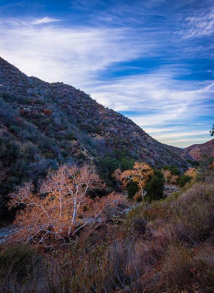 Eastern San Gabriel Mountains - San Gabriel Mountains National Monument