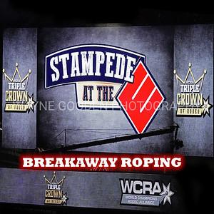 WCRA Breakaway Roping Long Round