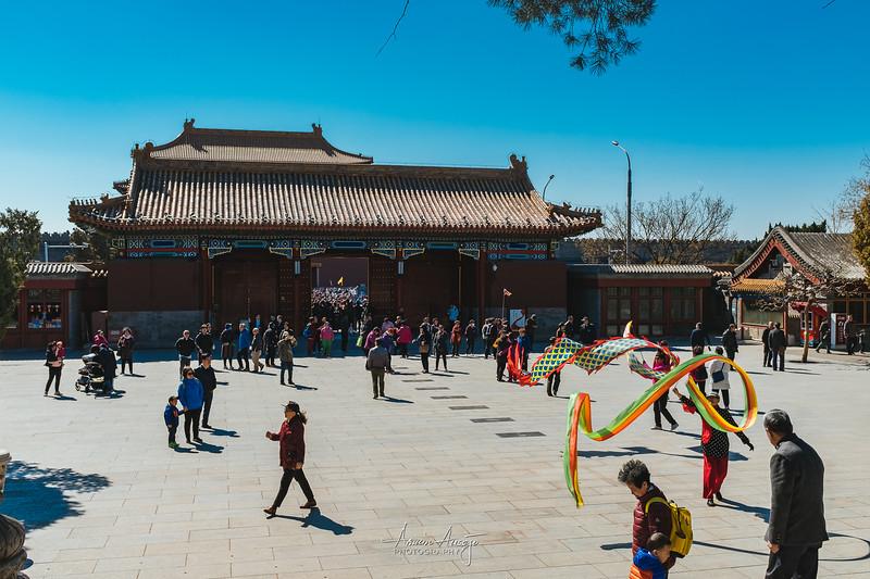 BeijingMarch2019-133.jpg
