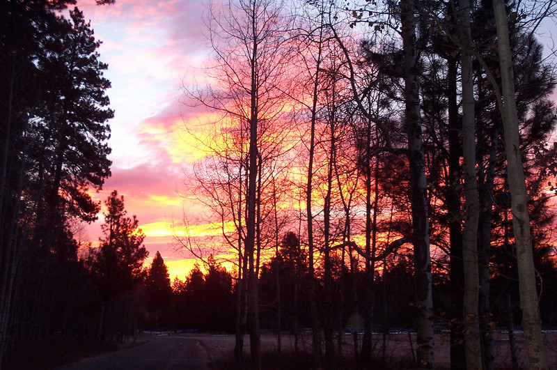 Sunrise 1-20-01.jpg