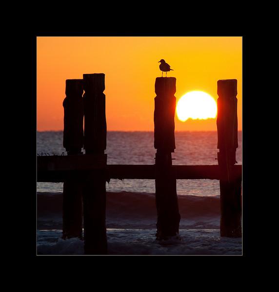 sunrise 3 small.jpg