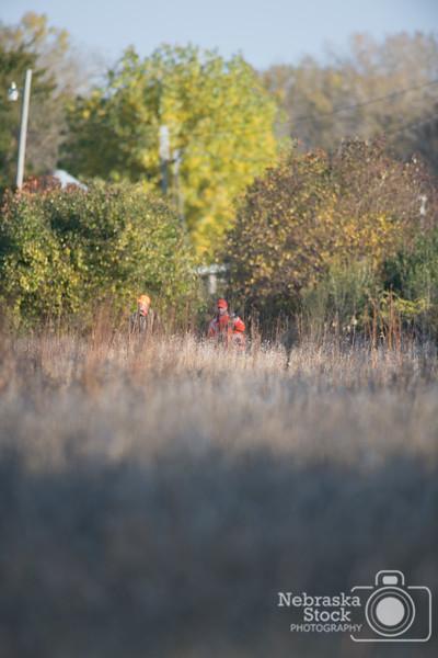Pheasant Hunt 10-17-14